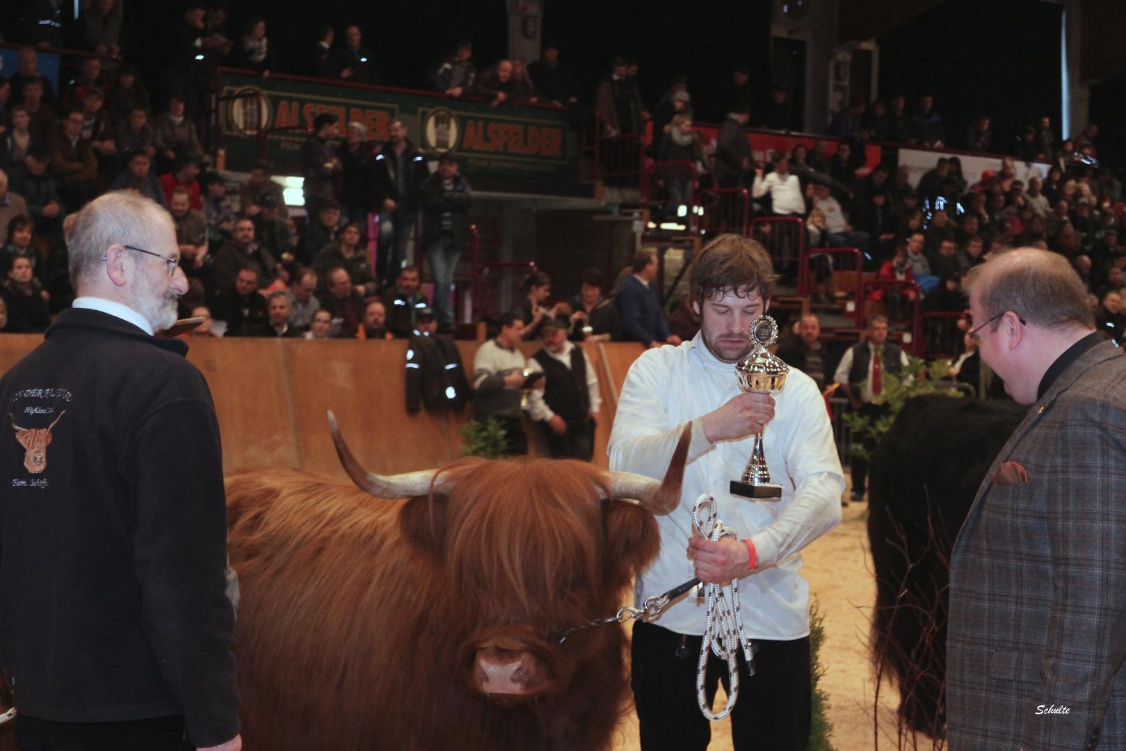 309 276 Wonne Pokal Bundesverband Highland x Siegerkuh Highland Dr. Urs Schöffel, Hessisch Lichtenau